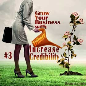 Grow Your Business Online with Triberr eSeries - #3 Increase Your Credibility and Get Help with Your Customer Base!
