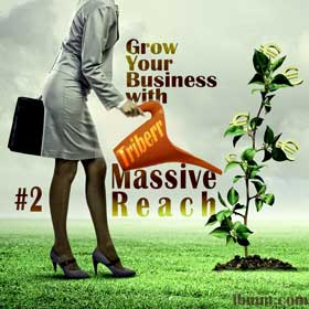 Grow Your Business with Triberr: #2 Massive Reach