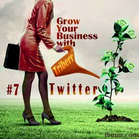Grow Your Business with Triberr: #6 Twitter
